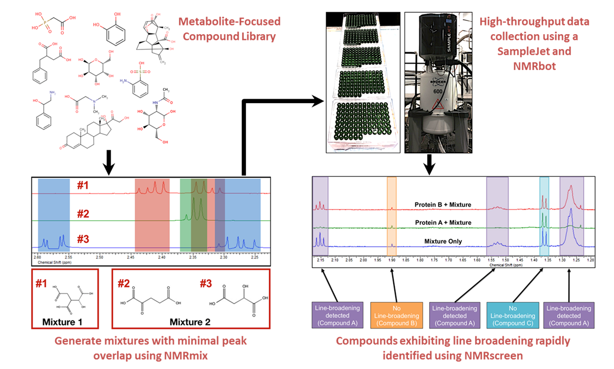 metabolite focused compound library