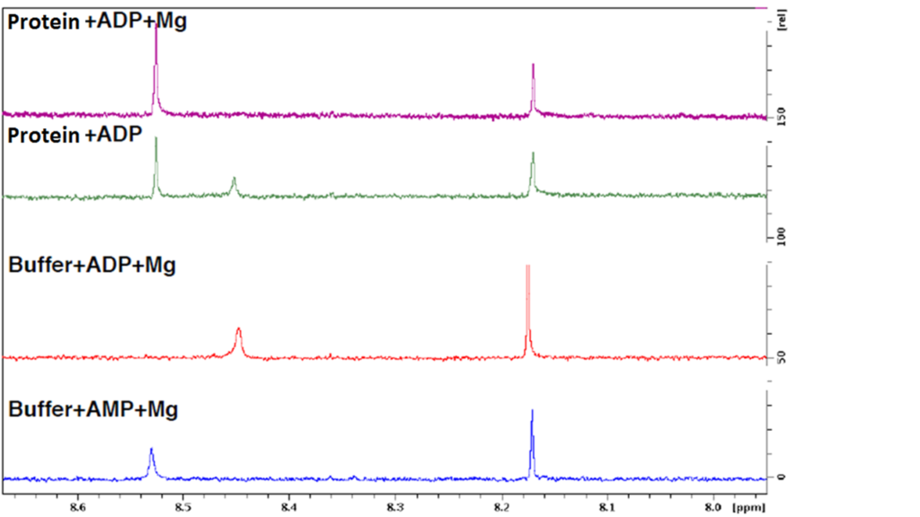 fig. 2ab adp to amp